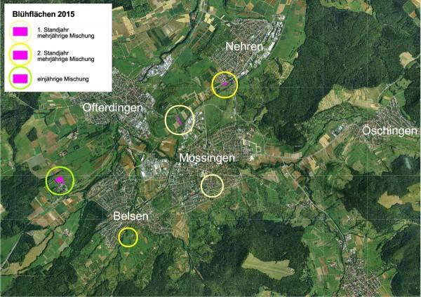 Übersicht: Biomassereiche Blühflächen im Oberen Steinlachtal