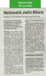 Schwäbisches Tagblatt, 9.11.2015: Netzwerk zieht Bilanz