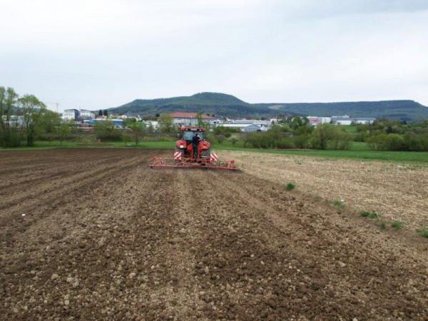 Idyllische Lage mit Blick auf Farrenberg, Erdrutsch und Dreifürstenstein - auch wenn ein feinkrümeliges Saatbett etwas anders aussieht